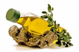 Plantas Medicinales que Curan la Artritis Reumatoide