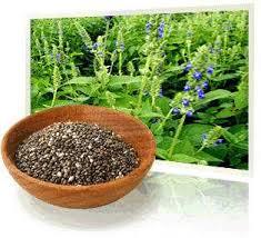 Cómo tratar la artritis con semillas de chía