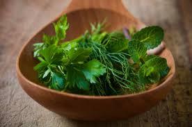 Hierbas Medicinales para la Artrosis para Aliviar los Síntomas