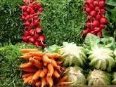 Qué es Bueno para la Artrosis de Manos: Verduras y Hortalizas