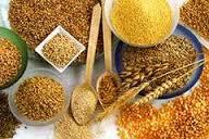 Qué Tomar para la Artrosis de Rodilla: Granos y Cereales