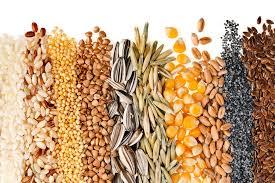 semillas para artrosis