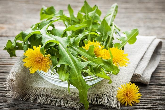 Dandelion Leaves in Your Tea or Salad